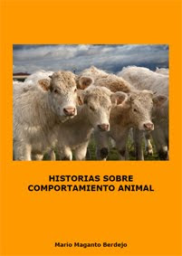 Puedes comprar mi libro en Amazon