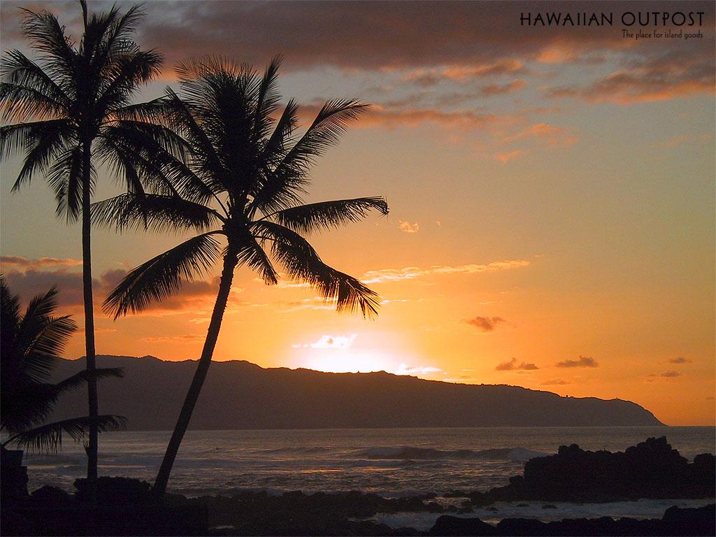 http://3.bp.blogspot.com/-jwPZa7TyhSM/T-M6_tOQkRI/AAAAAAAABAA/zMO4tKW09RA/s1600/beach-sunset.jpg