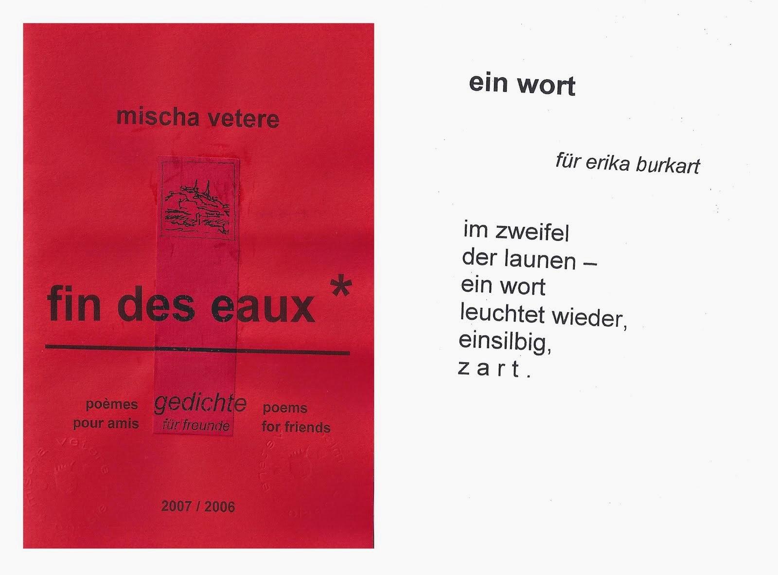 FIN DES EAUX mischa vetere erika burkart schweizerisches literaturarchiv nzz beatrice von matt GBS