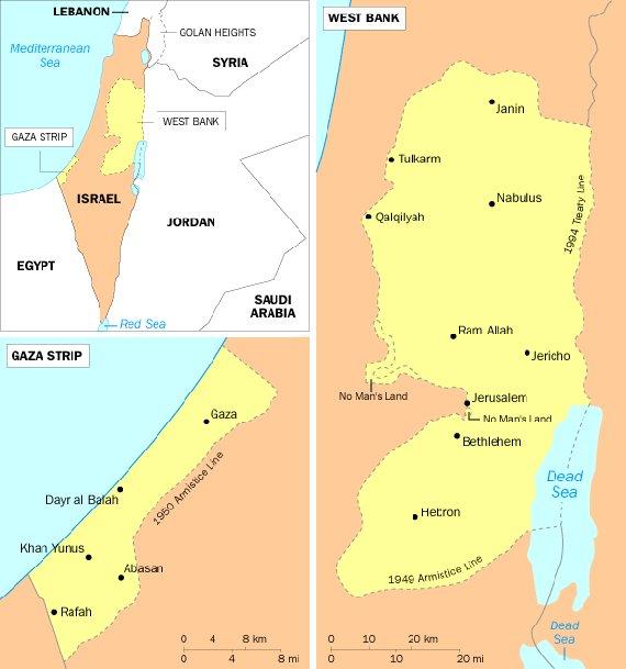 ¡Estado Palestino Ya! Un Camino Hacia la Paz