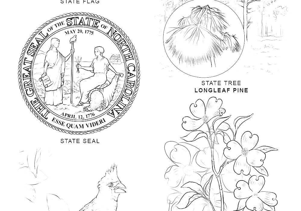 List Of North Carolina State Symbols What Is The North Carolina
