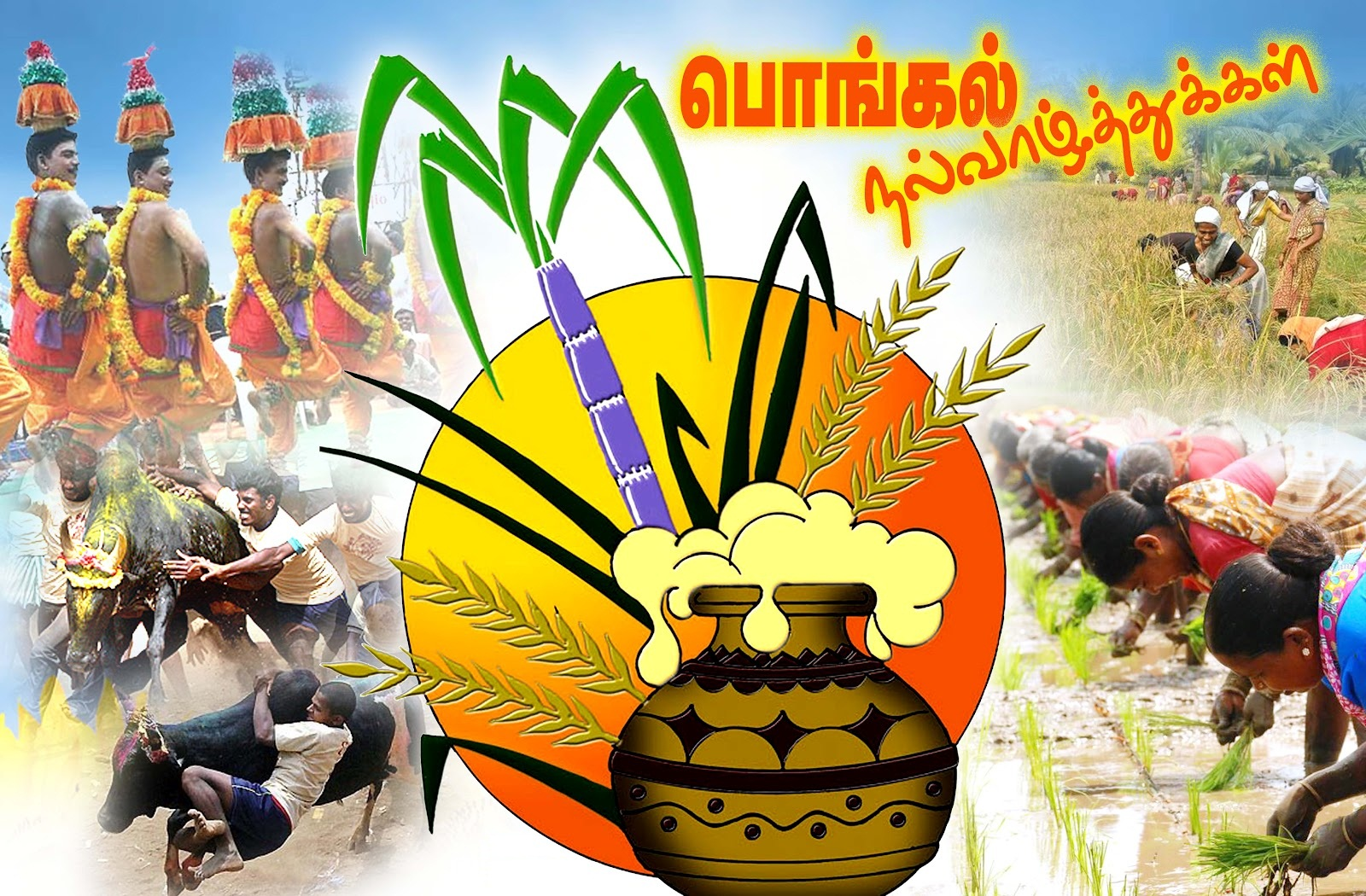Related searches : Happy Pongal Greetings free download , Happy Pongal ...