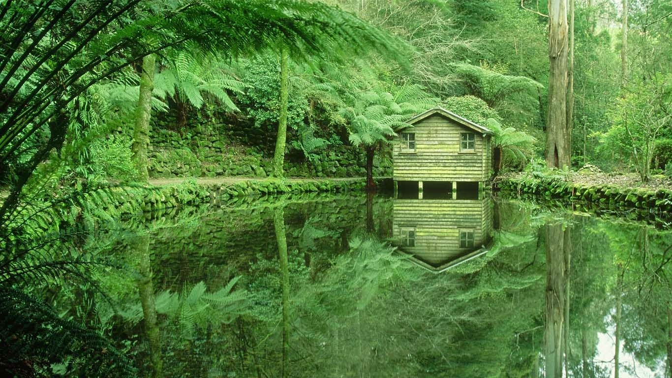 Alfred Nicholas Memorial Gardens in the Dandenong Ranges, Victoria, Australia (© Bob Wickham/Photolibrary/Getty Images) 165