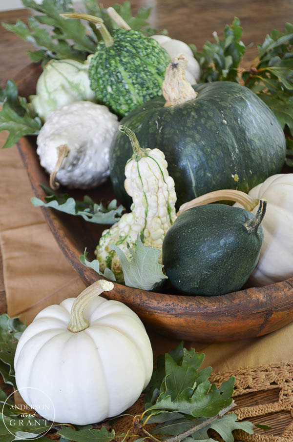 Are you creating a neutral fall this year?  Look to nature and create a display with squash, gourds, pumpkins, and leaves.  |  www.andersonandgrant.com