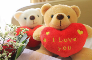 Happy Teddy Day 2016 Quotes Messages Images