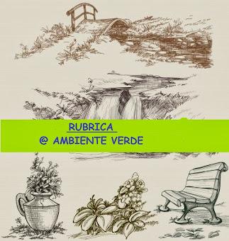 RUBRICA VERDE ...