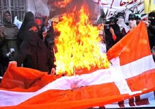 Bendera Denmark dibakar saat protes kartun Nabi (blader.org)