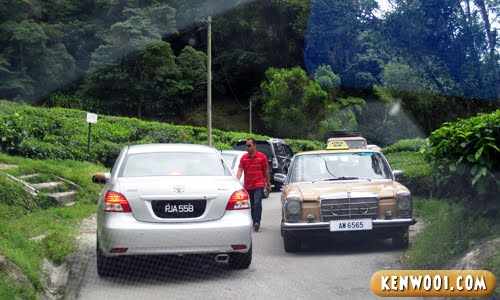 cameron highlands traffic jam