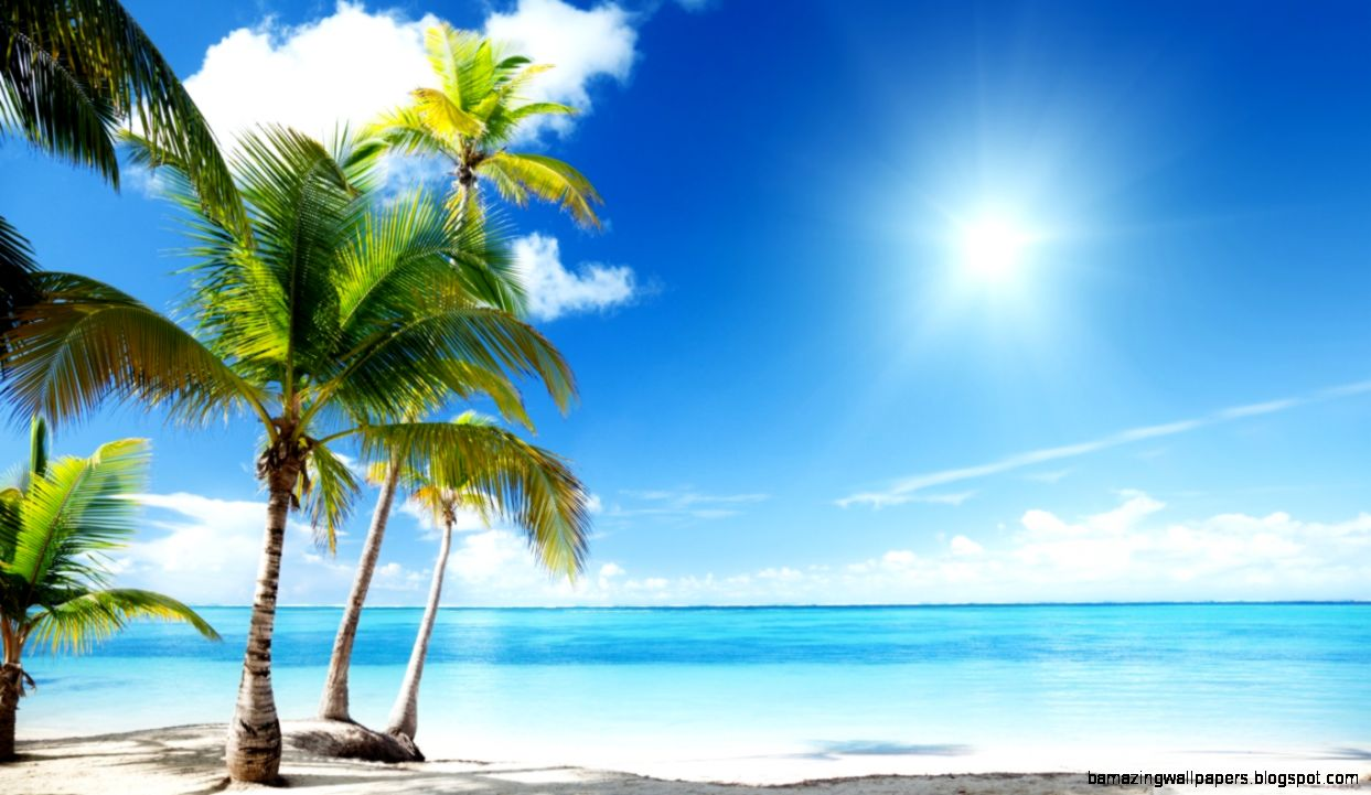 Tropical Beach Paradise HD desktop wallpaper  Widescreen  High