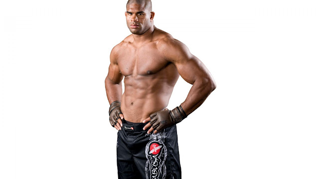 ufc mma fighter alistair the reem overeem picture image