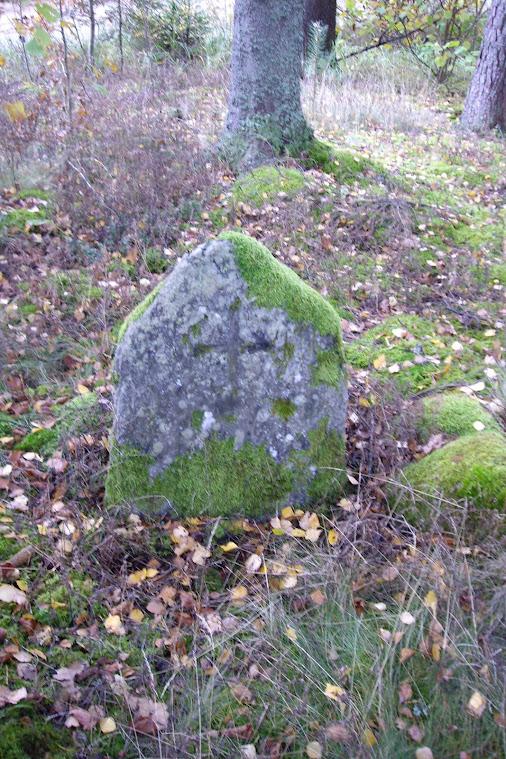 Viduslaiku kapsēta Raunas pagastā