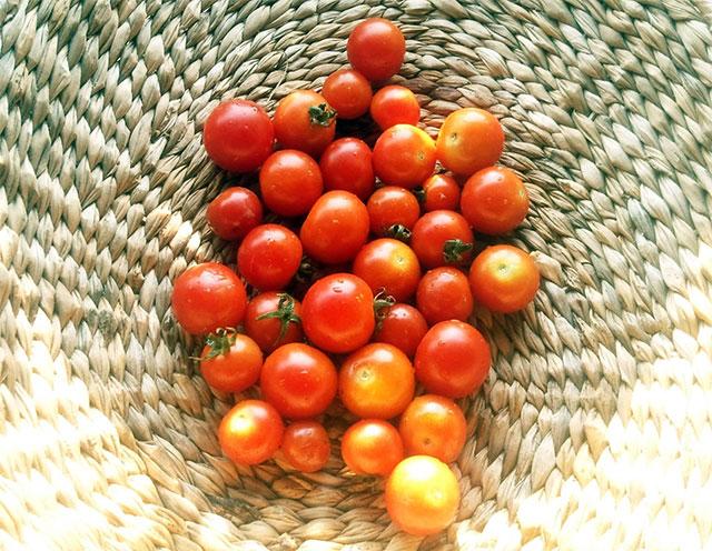 tomate mini