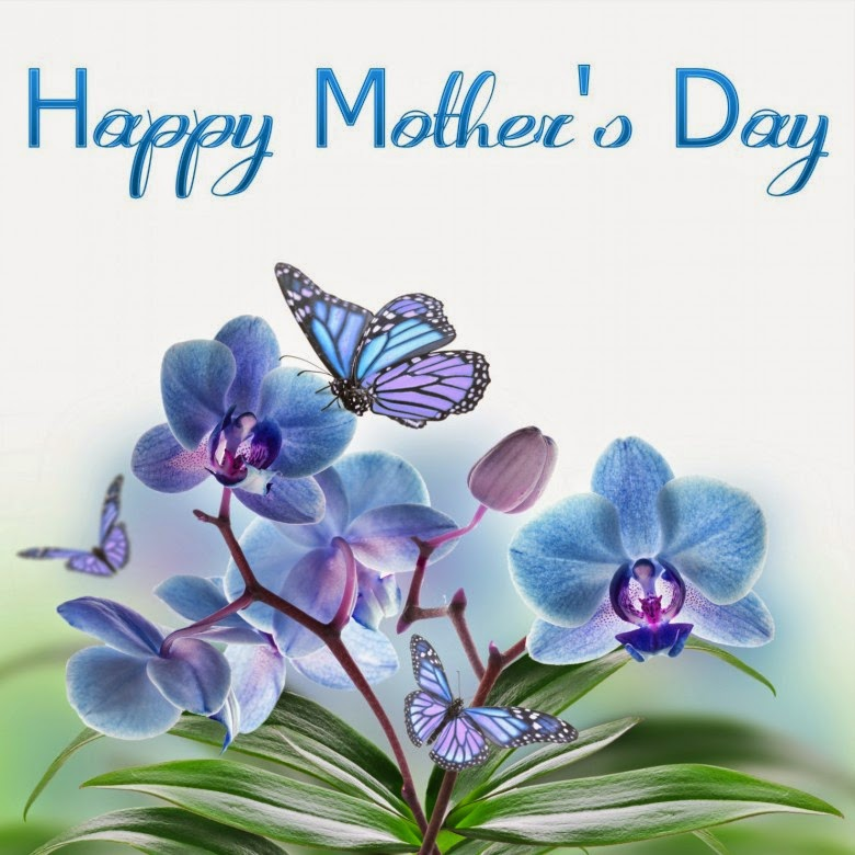 happy mother s day 2014 images flowers pictures wallpapers with