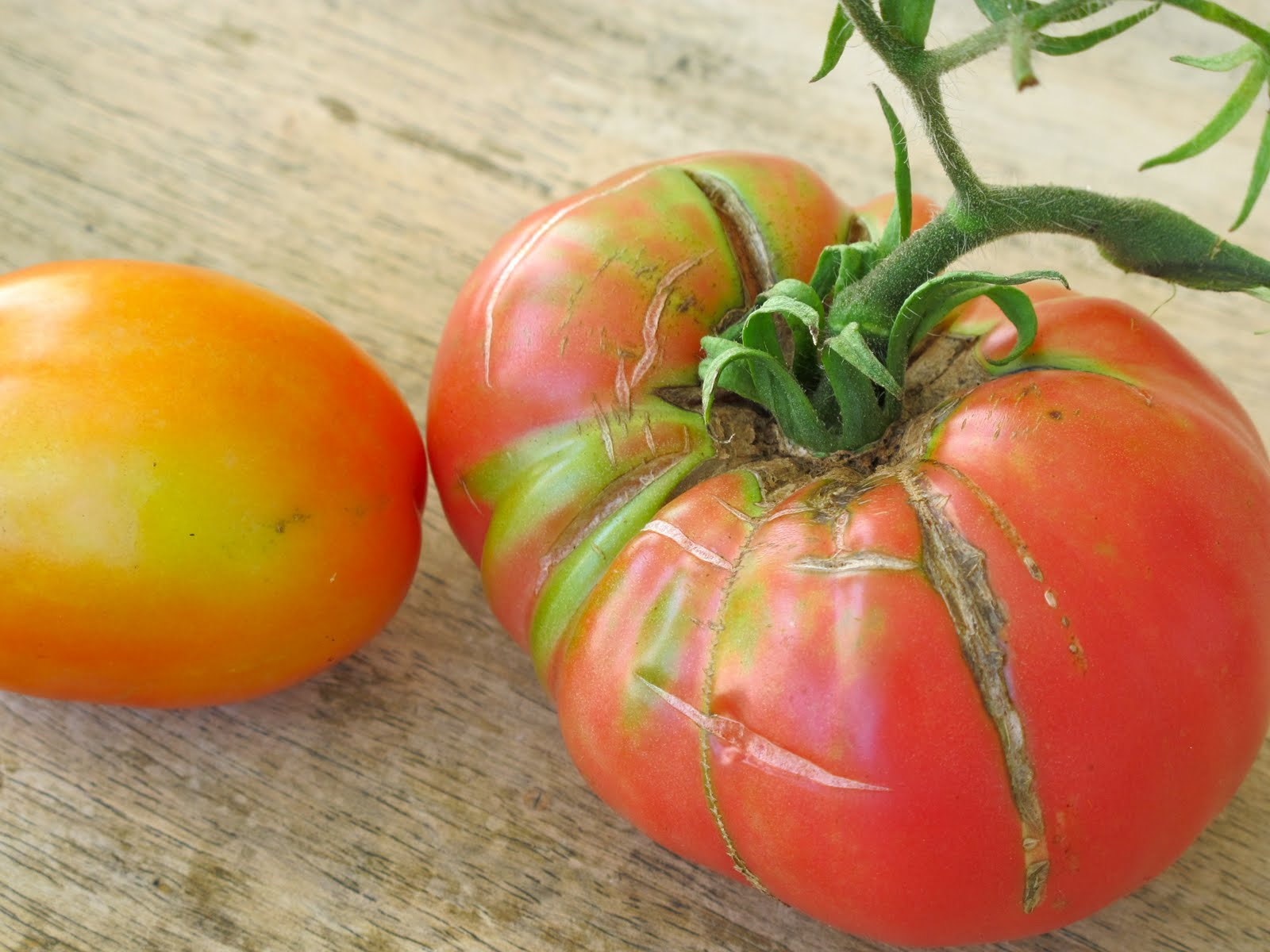 Jenny steffens hobick tomato season heirloom tomato recipes