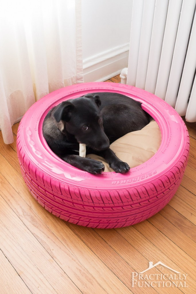 12 Amazing Diy Dog Beds Do It Yourself Ideas And Projects