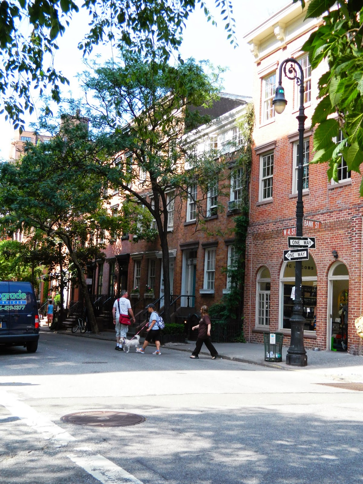 new york city chelsea beautiful streets brown house tree lined