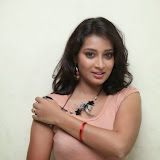 Bhanu Sri Hot Photos at Veedi Pourusham Movie Press Meet 37