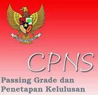 Nilai Passing Grade Lulus CAT CPNS 2014