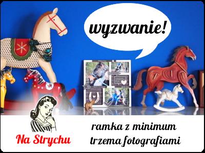 http://blog.na-strychu.pl/2014/06/wyzwanie/