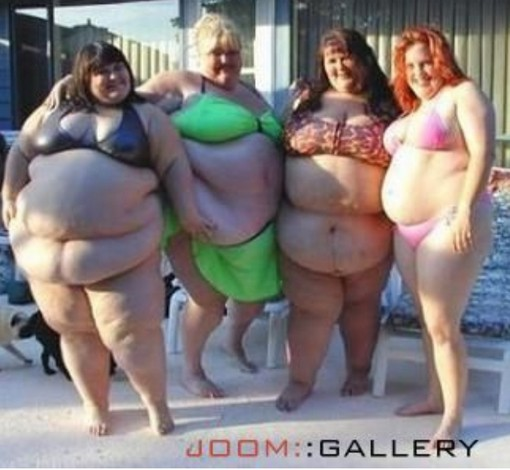 fat girls in bikini