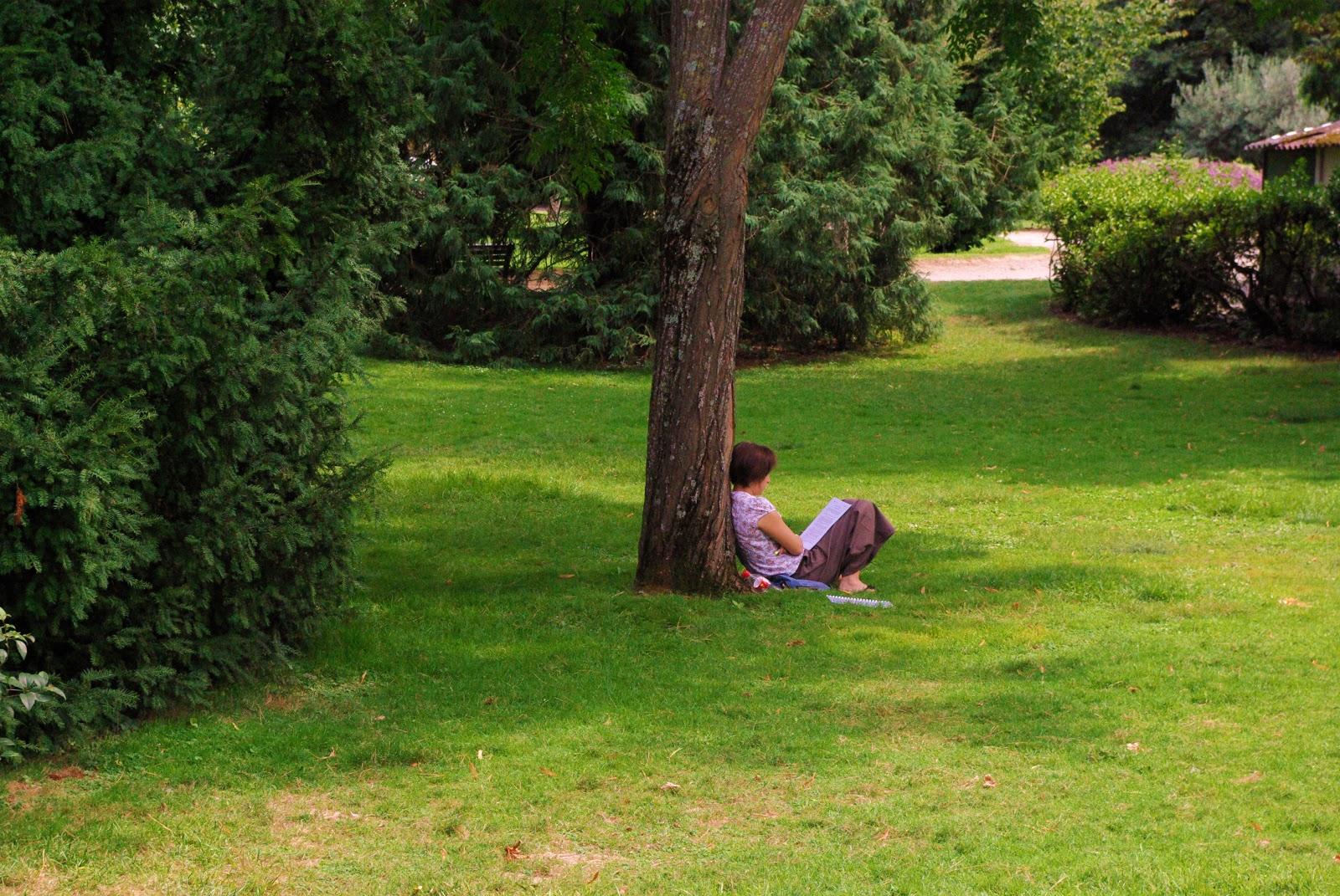 Pierre boyer jardin des plantes de toulouse for Jardin toulouse