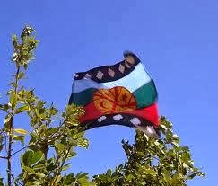 Mapuche flag amongst branches