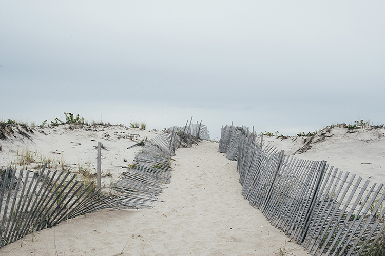 Hamptons Bay_ponquogue beach November
