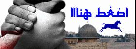 إضغط على زنادك يا حامل ثورة القدس .. ووطد خطاك لثورة  نبيك في القدس العلا ..