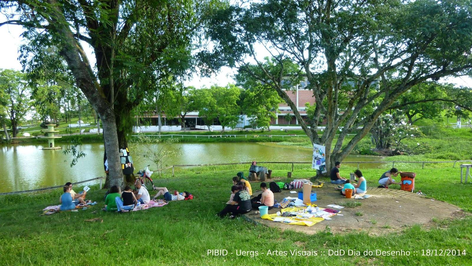 Grupo Pibid-Artes Visuais no DdD, em dez.2014