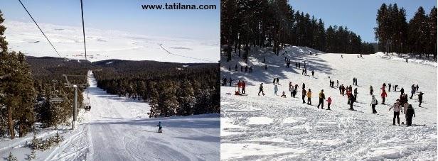 Kars Sarıkamış Kayak Merkezi