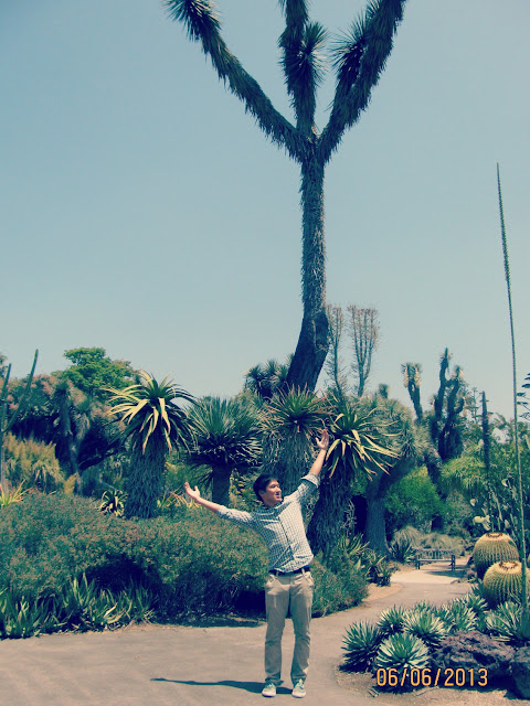 Huntington Gardens- Imitating Trees