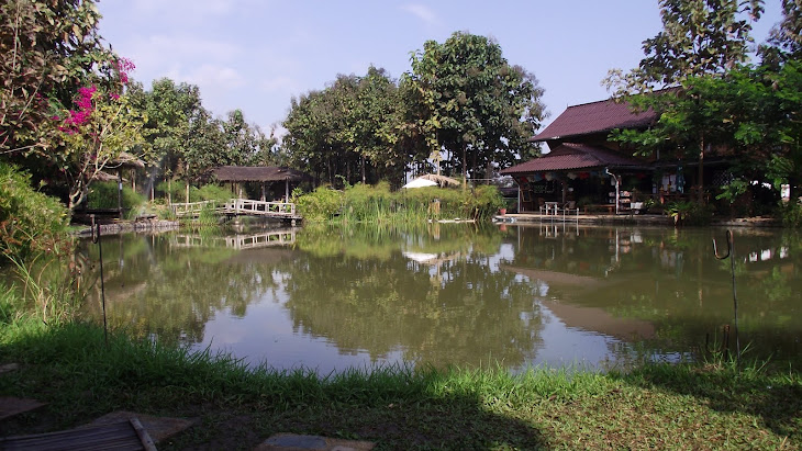 Pai piranha fishing park