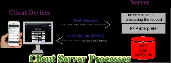 Client-Server Processes