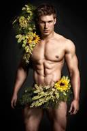 Yellow Collection Photos Set, Hunks in Happy Color