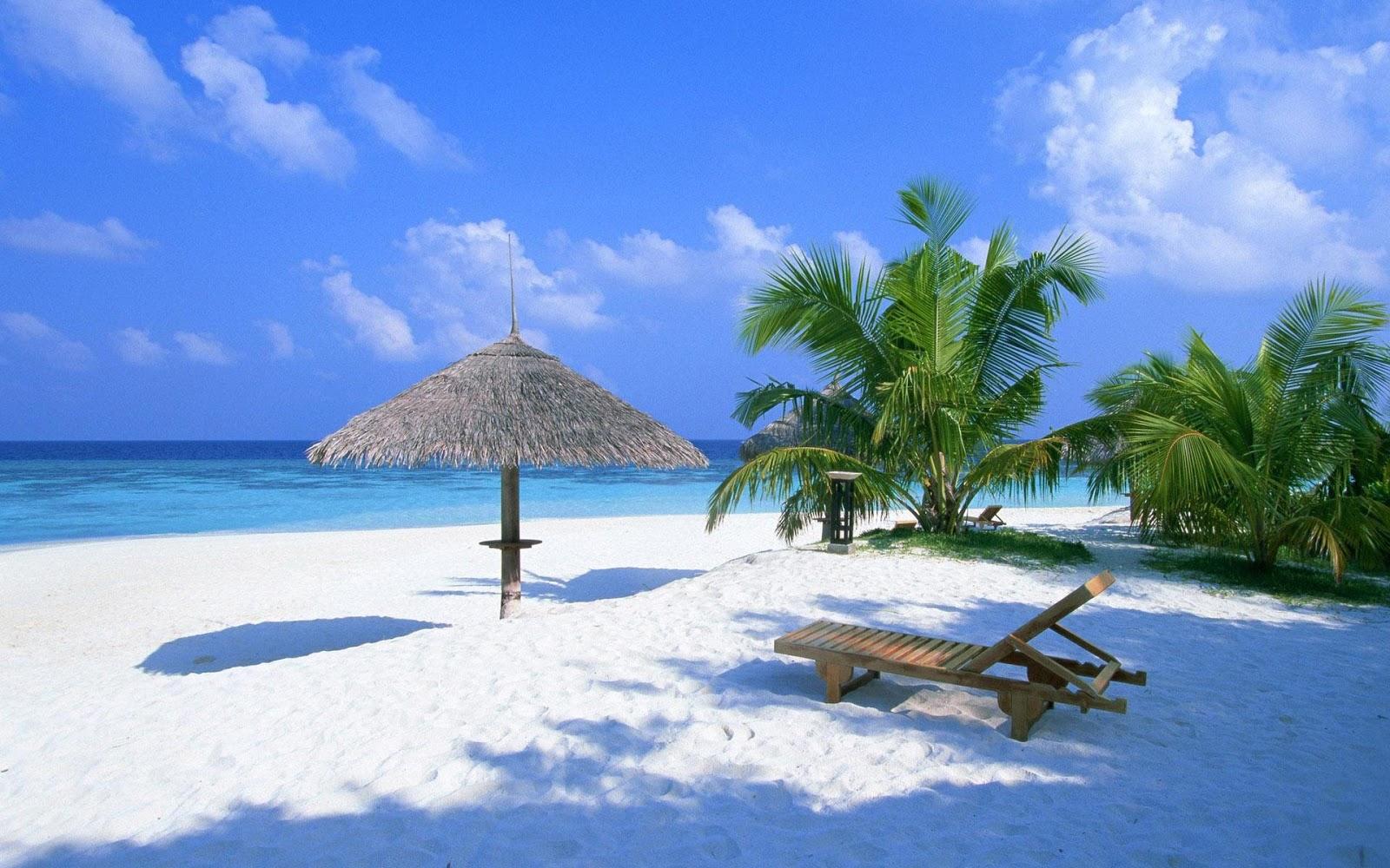 hd hintergrundbilder landschaften meer strand sommer palmen palmenstrand bilder. Black Bedroom Furniture Sets. Home Design Ideas