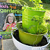 Urban Herb Garden Ideas