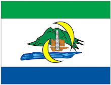 BANDEIRA DA CIDADE DE SERRA.