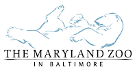 The Maryland Zoo Internships