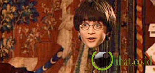 Invisibility Cloak – Harry Potter