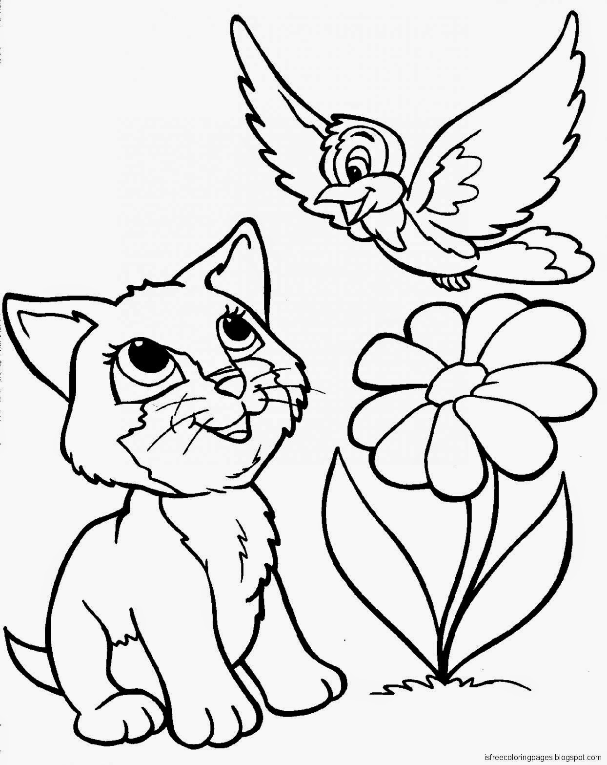 Cats Coloring Pages   Free Coloring Pages