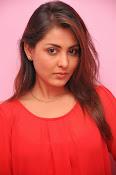 Madhu shalini latest glam pics-thumbnail-16