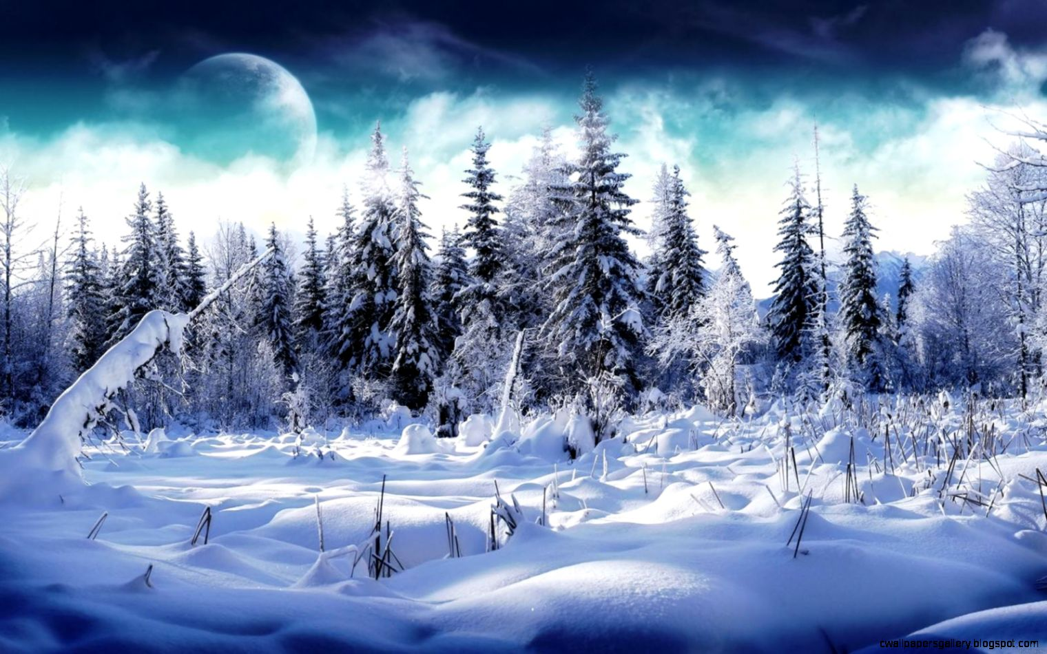 Winter Forest Desktop Wallpaper   WallpaperSafari