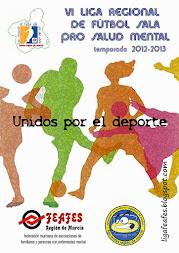 CARTEL DE LA LIGA FEAFES 2012-2013