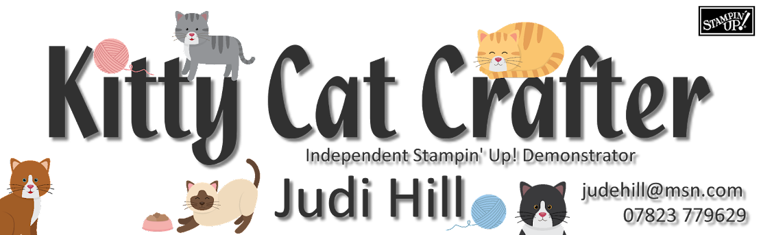 Kitty Cat Crafter Independent Stampin Up Demonstrator