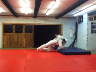 auckland bjj epsom brasilian jiu jitsu