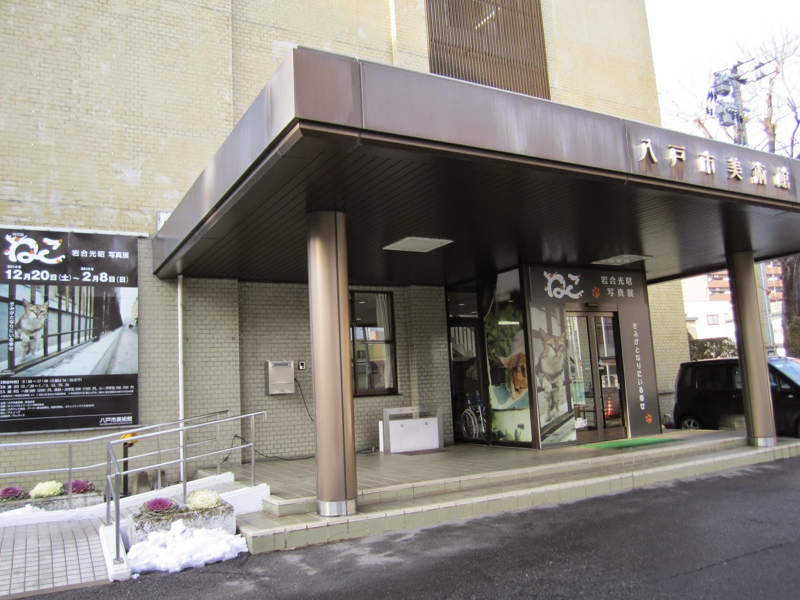 Hachinohe City Musem of Art Special Exhibit Neko by Iwago Mitsuaki 八戸市美術館 特別展「ねこ 岩合光昭写真展」