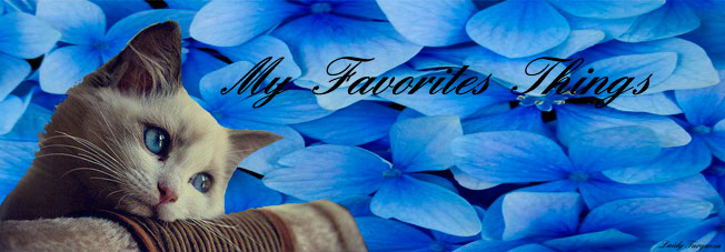 My favorites things