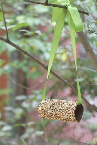 20 creative and cool ways to reuse toilet paperrolls for Toilet paper tube bird feeder