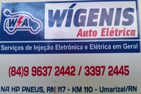 Wíginis Auto Elétrica