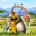 Madagascar 3 Wallpaper HD